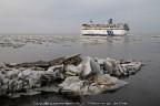 Veerboot Friesland ijs Harlingen