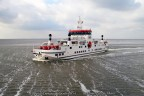 Veerboot Ameland Holwerd